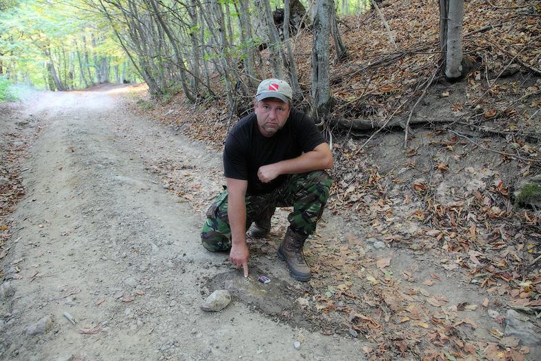 Меловой период, окаменелость, артефакты мелового периода, ископаемые позвоночные, раскопки в Крыму