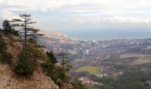 Yalta taraktash